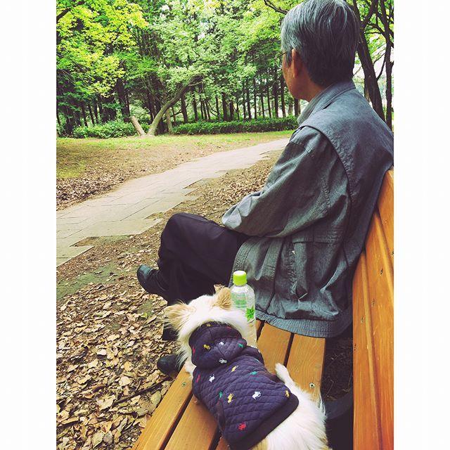 お父さんといろはすとララ🐶 ララは喜びすぎてよく走るし、お父さんは健康でよく歩くし、それだけで私は幸せだ。他にたくさん欲しいものはないから、このふたつはずっとそばにあったらいい。 . #葛西臨海公園 #お散歩 #お出かけ #家族 #公園  #愛犬 #お父さん #土曜日 #幸せな週末 #공원  #숲 #산책 #나들이 #가족 #강아지 #아빠 #토요일 #행복한 #주말