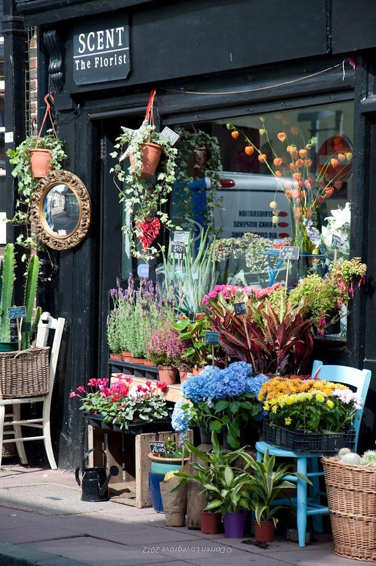 Photograph Flower Store - Brighton - UK by Darren Lovegrove