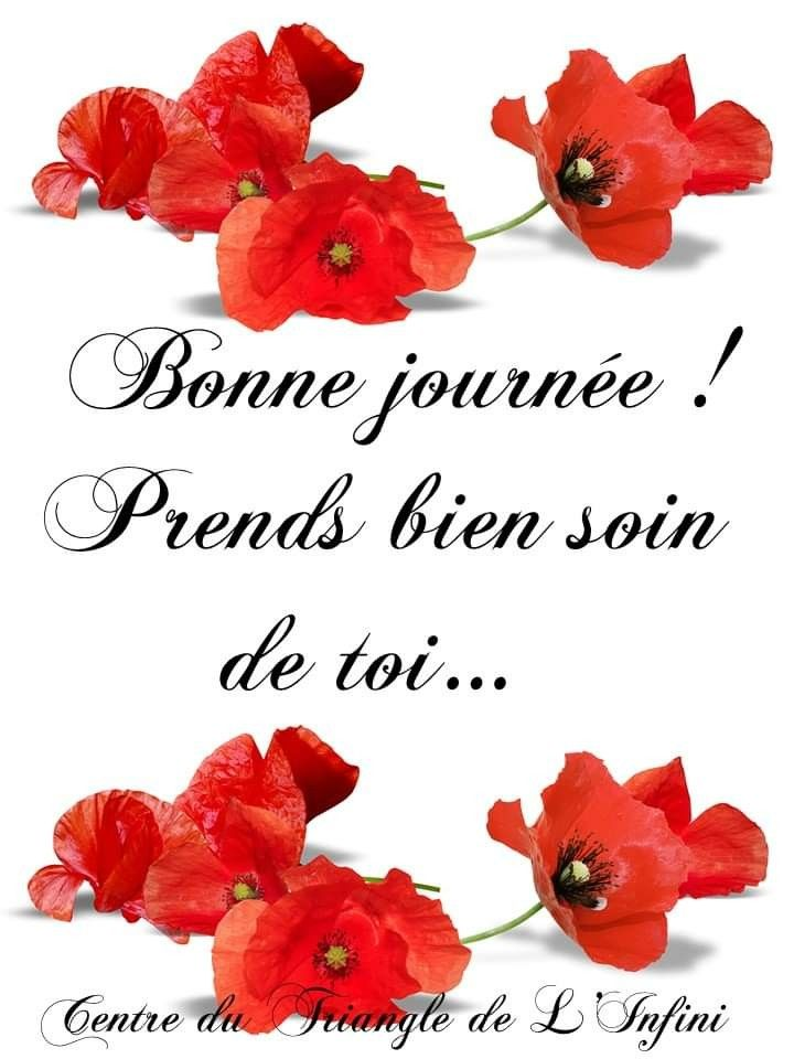 Épinglé par Linda Vv sur Bonjour et bonne journée | Image de bonne journée, Bonne  journée mon amour, Fleurs bonne journée