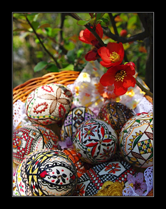 41 best romanian easter eggs images on pinterest egg art easter a lovely spring tableau of romanian easter eggs and flowers negle Choice Image