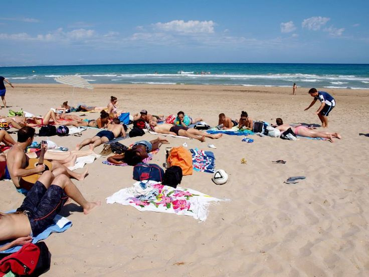 Picnic & Voley en la playa