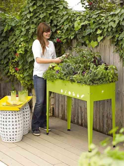potager en hauteur et table verte