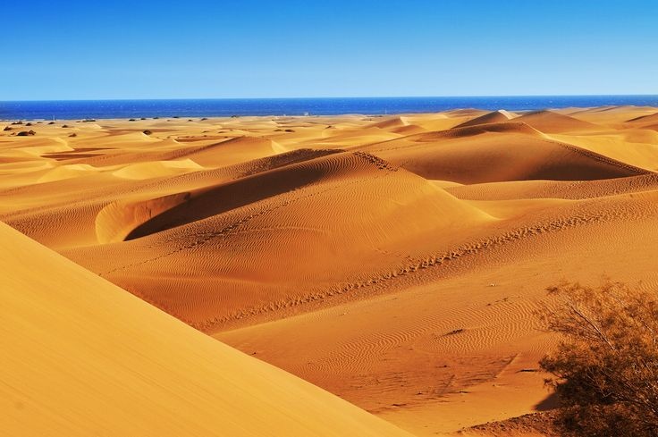 Les dunes de Maspalomas aux îles Canaries : 30 sites naturels étonnants et méconnus en Europe - Linternaute