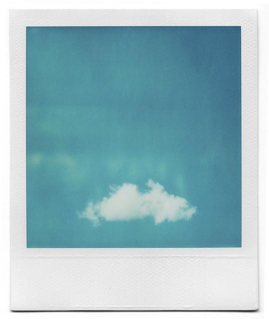 Polaroid delightfulness by Grant Hamilton