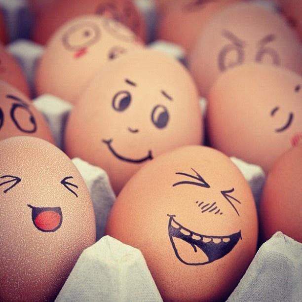 Organic Cage Free Eggs