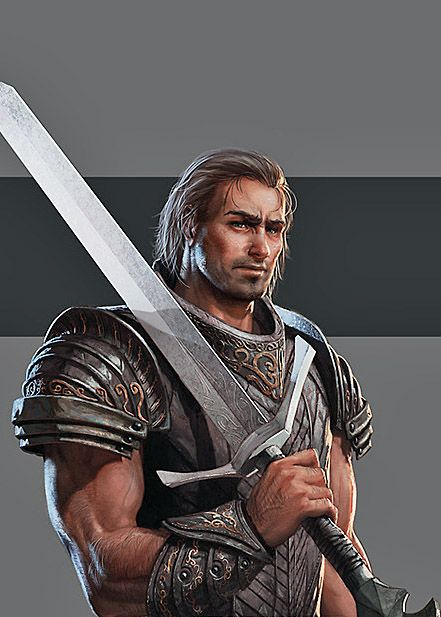 Torin é um guerreiro com formação militar pelos Sentinelas, em que ingressou com a morte de sua família em um ataque que sua vila sofreu. 8o nível. Um grande e forte guerreiro, costuma ser sério e desconfiado com estranhos, mas amigável e sorridente com quem conhece. Torin tem um voto de castidade, feito a Nira, que lhe garante algumas habilidades especiais. O voto é até a destruição de Lothar. Nara e Aliana o chamam de grandão. Ele tem 1,98m de altura.