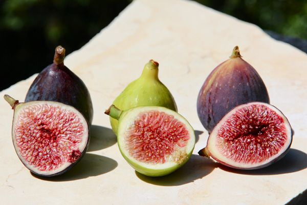 In Comparing Fresh Fig Varieties, we talk about different types of figs (Black Mission, Kadota, and Brown Turkey) and their various flavor profiles. | Bakepedia Tips