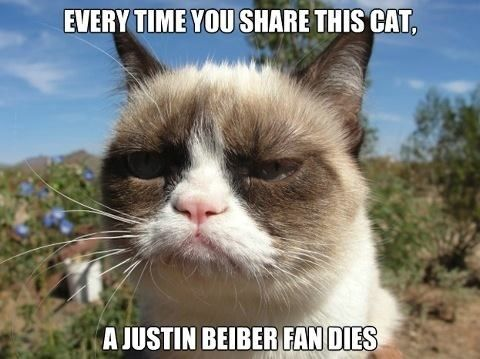 PIN YOU FOOLS! PIN! PIN GRUMPY CAT!! <<< Okay this is not cool. Whoever started this good for you (I say sarcastically) but this is wrong. Just because you think Justin Bieber and his fans are terrible doesn't mean you can go around posting things like this.