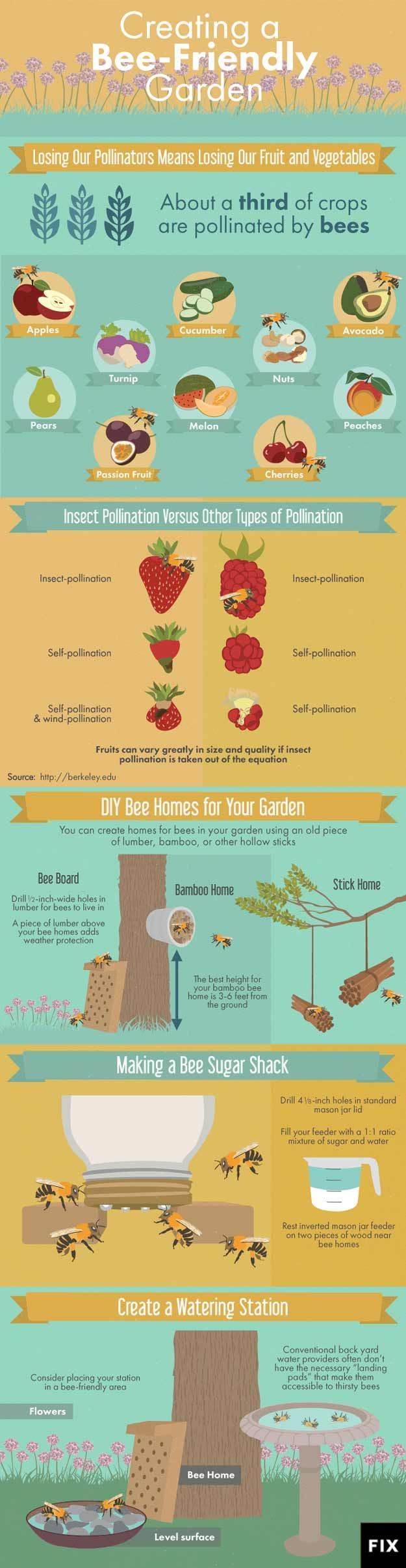 How to Create A Bee Friendly Garden