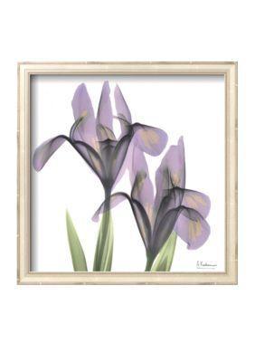 Art.com  A Gift of Flowers in Purple Framed Art Print - Online Only