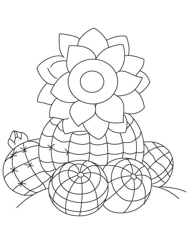 Watermelon Cactus Coloring Page Coloring Pages Coloring Pages
