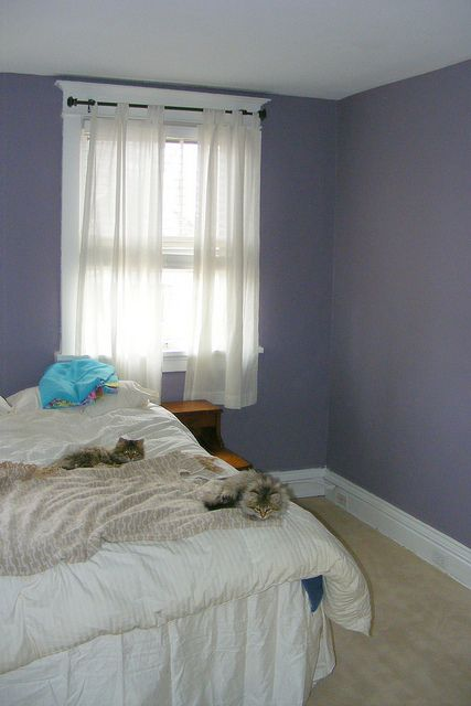Behr Gothic Amethyst Purple Kids Rooms Accent Wall