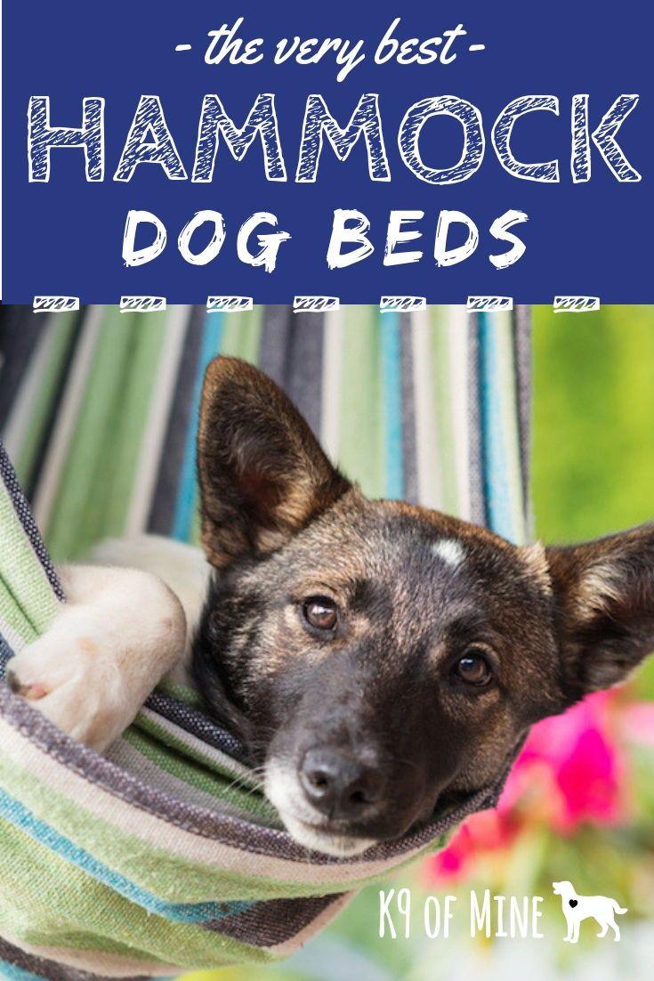 5 Best Hammock Dog Beds 2020 Reviews Swing Snooze In Style Dog Hammock Pet Hammock Dog Bed