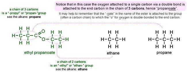 propionate vs acetate