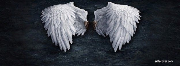 Angel Wings Facebook Cover