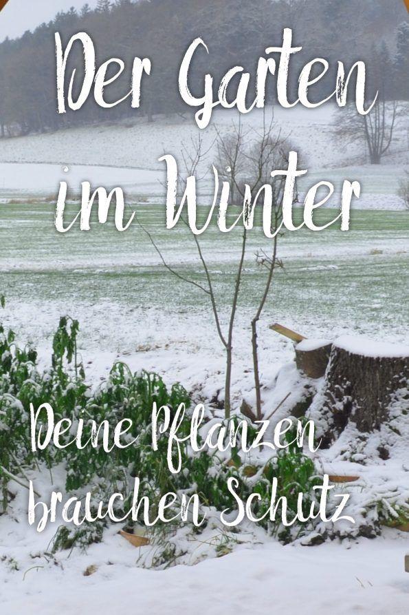 Es Ist Winter Was Gibt Es Im Garten Im Winter Zu Tun Garten