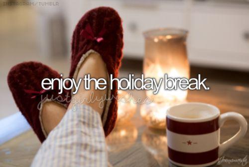 Enjoy the holiday break ✔️