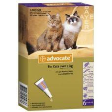 Advocate cat este o soluţie antiparazitară pentru pisicile cu greutatea mai mare de 4 kg, cu aplicare cutanată.