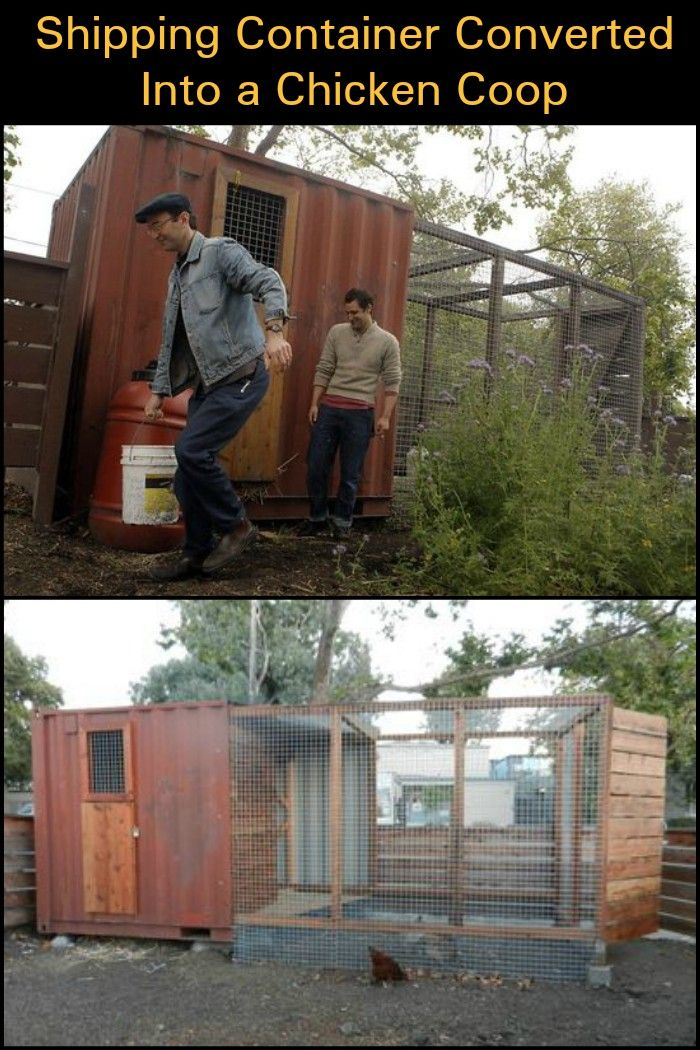 Shipping Container Converted Into A Chicken Coop Coop Chicken Coop Chicken Runs