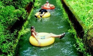 Floating on a tube at a sugar plantation might be the sweetest thing ever - Posted on Roadtrippers.com!