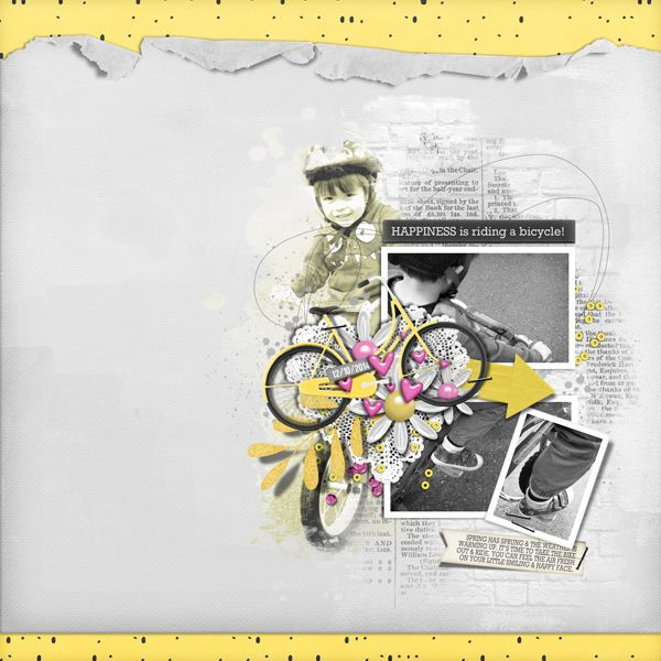 Happiness is a Bike - The Digichick Gallery