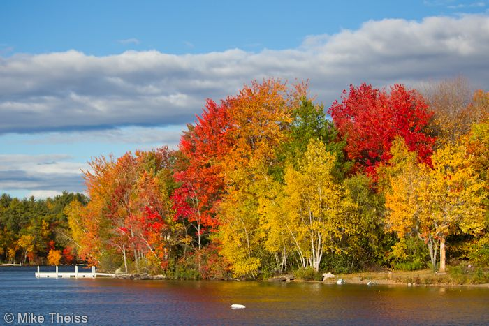 Fall foilage in Maine