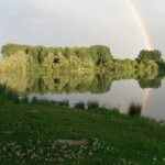 Carp-Setup-Rainbow-Best-Bait-For-Carp-Fishing