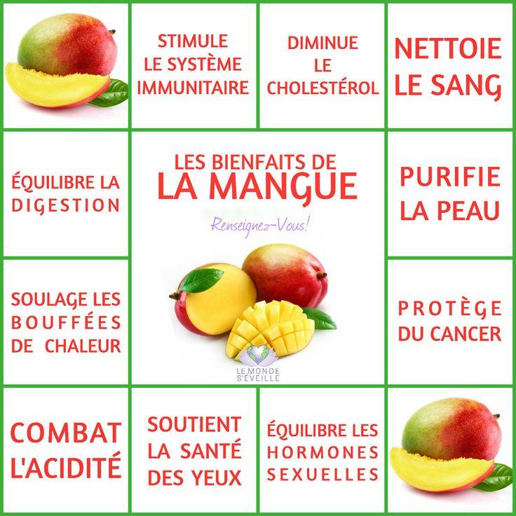Les Bienfaits de la Mangue | LA MANGUE Le Monde s'Eveille Grâce à Nous Tous ♥