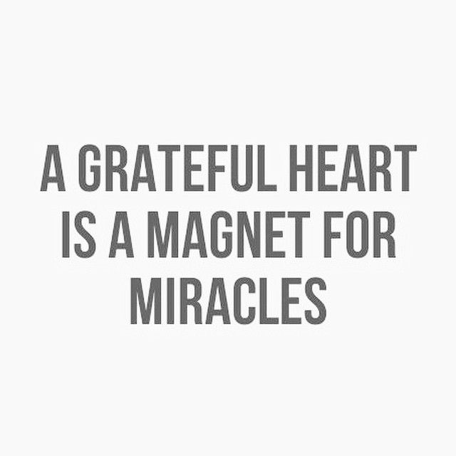 Quotes About Being Grateful Amusing 20 Best Bforc Gratitude Images On Pinterest  Be Grateful Being