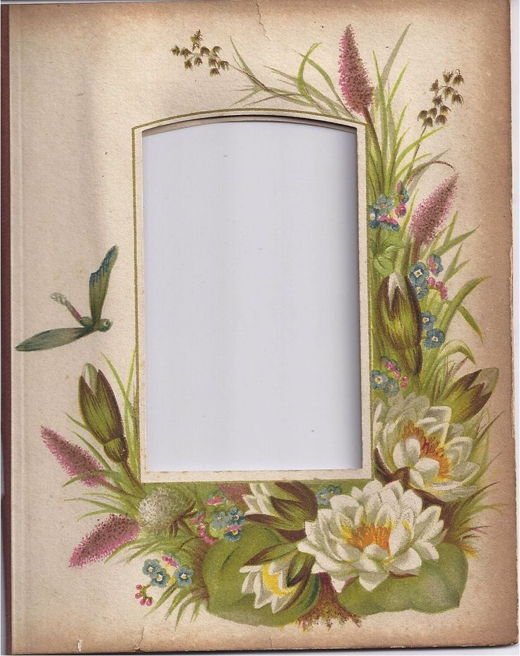 Grey Album Cardboard Art Paper Texture Bright Rough: 25+ Best Ideas About Photograph Album On Pinterest