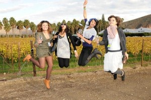 The Wacky Wine Weekend festival attracts droves of avid wine lovers from all across South Africa. The Wacky Wine Festival takes place in the charming and scenic Robertson Wine Valley, with wineries from Ashton, Bonnievale, McGregor and Robertson, all nearby towns in the region, participating.