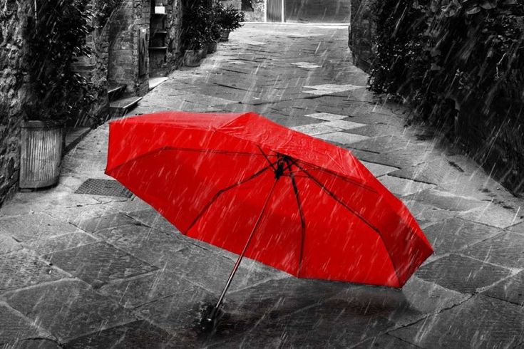 Protect Your Household Why Families Require Umbrella Insurance Coverage --- How safe is your household? Do you have enough insurance to protect your assets in the event you are liable for an auto accident or injury at your hom... -