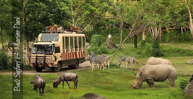 Bali-Safari-&-Marine-Park