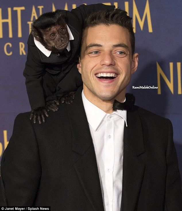 Rami Malek and Crystal the monkey; Night at the Museum: Secret of the Tomb event.