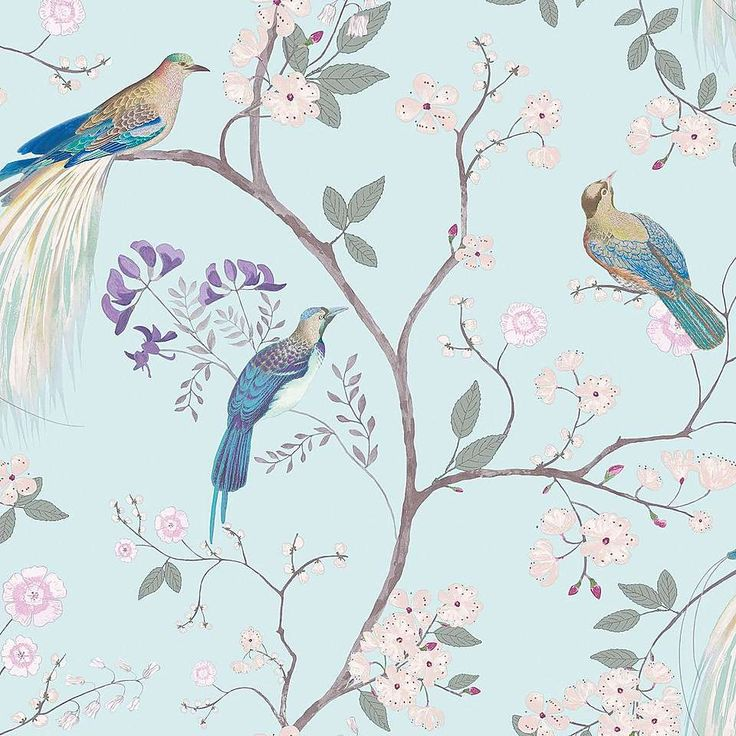 Dorma Maiya Duck Egg Wallpaper In 2019 Wallpapers Duck