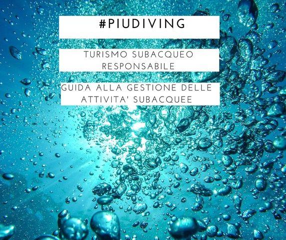 Continua la nostra guida sui diving, ecco il terzo punto: snorkeling & immersioni e ancoraggio.