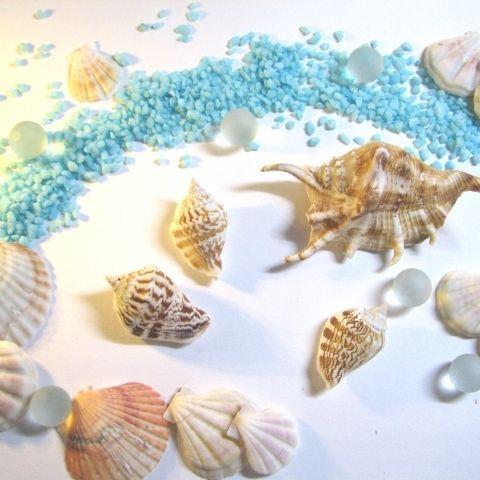 目次1 夏に向けて貝殻アクセサリーを作りたい!2 方法1・貝殻に穴を開ける3 方法2・レジンを使う4 方法3・接着する    夏に向けて貝殻アクセサリーを作りたい! 海で拾ったきれいな貝殻を持て余している、貝殻アクセサリーを作ってみたいけど...