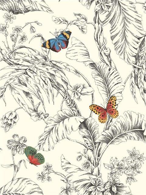 Black and White Papillon Wallpaper