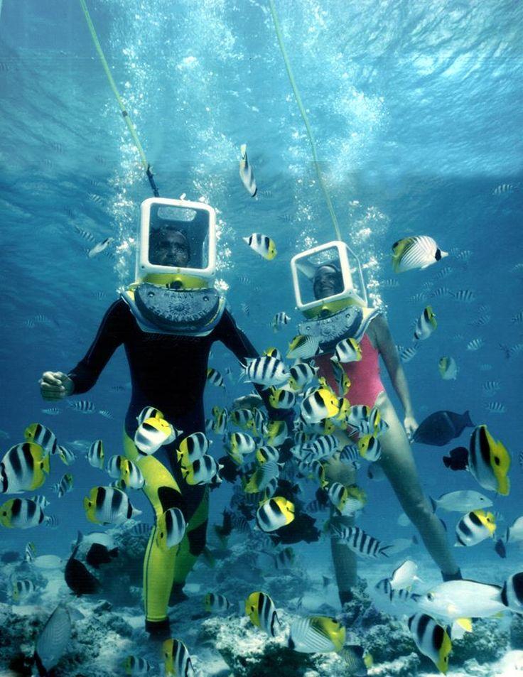 aqua safari, Bora Bora