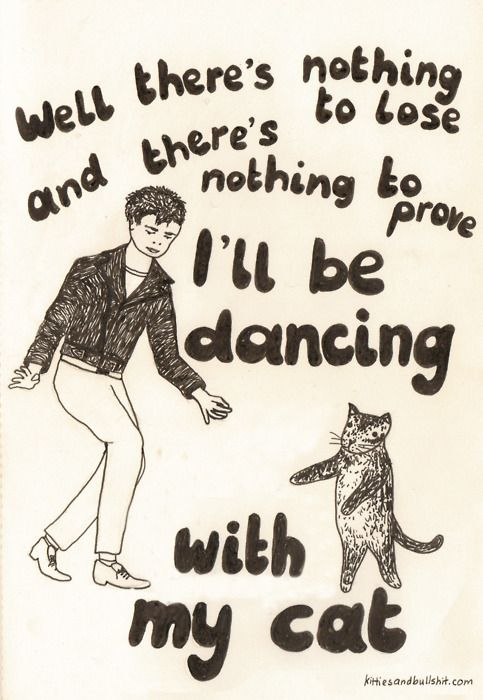 I dance with my cats, I dance with my cats and I AM NOT ASHAMED