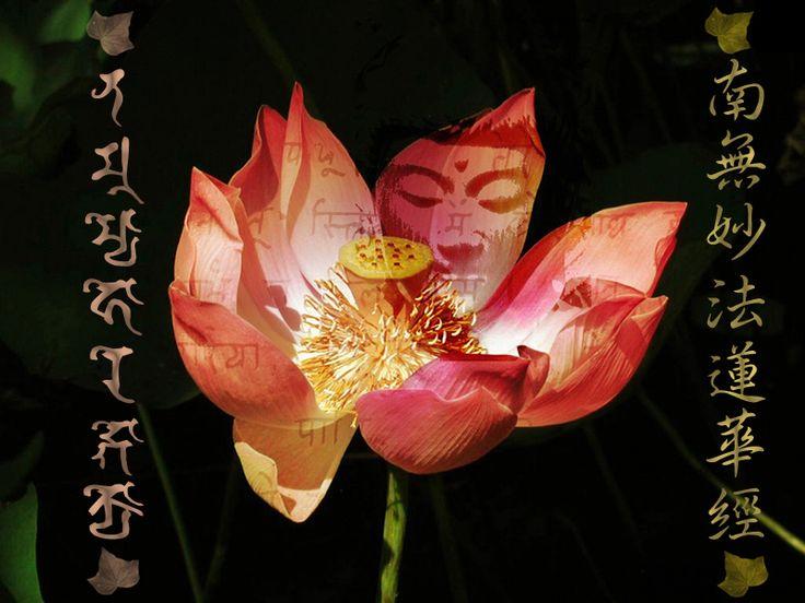 Buddha's face imprinted on a lotus petal