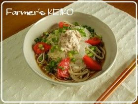 【農家のレシピ】冷やしツナサラダうどん