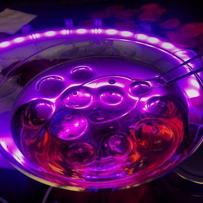 Atrévete a tomarte un cóctel como nunca lo habías hecho! Te traemos de forma exclusiva la Molecular Experience at Home, una degustación de coctelería molecular (Pearls) para amenizar tus fiestas o eventos corporativos: - Vodka Frambuesa. - Vodka Rosas.  - Gin & Tonic.  - Ron Pasión.  - Ron Vainilla Coco. No te las pierdas en exclusivo online, sólo en nougatic.com! http://ow.ly/GhuEn