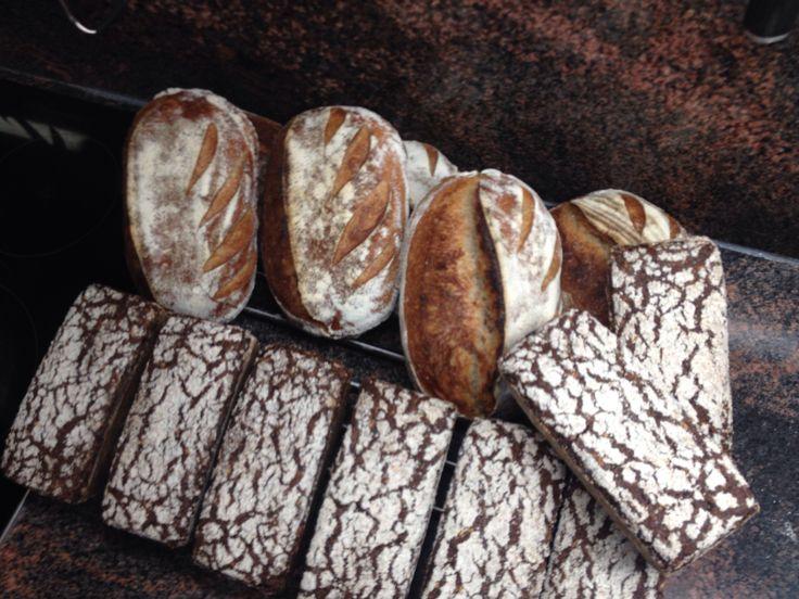 #Raimugido sourdough breads. Wheat with barley and rye with malted rye and oatmeal.