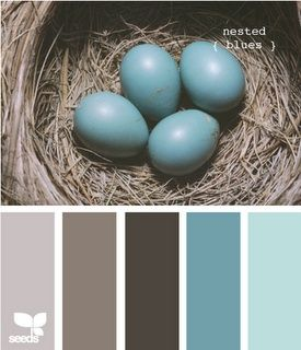 Turquoise, grey and brown. Our room is grey and our bathroom is brown... now we need turquoise accents :)