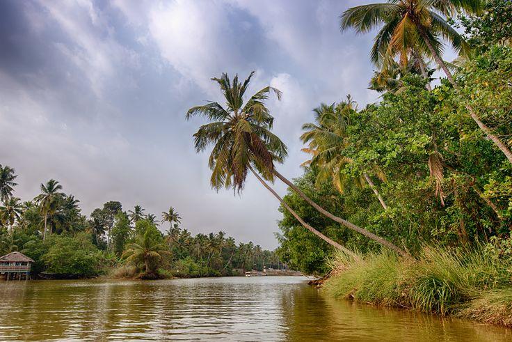 https://flic.kr/p/nvvk6y | Backwater in Poovar, Kerala, India