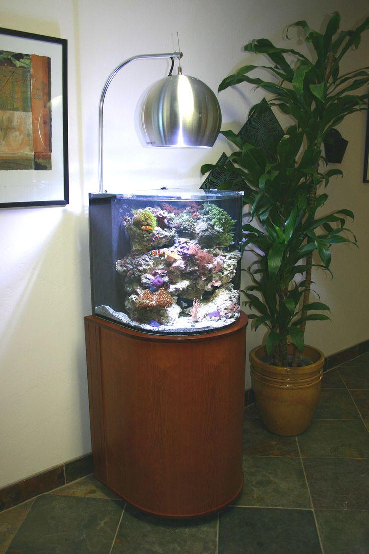 99 best images about fish tank desks on pinterest home for Fish tank desk