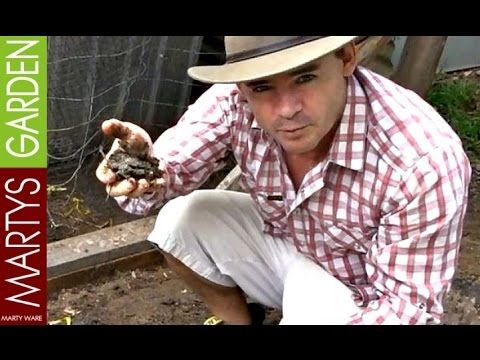 Compost From A Chicken Coop is Awesome - YouTube