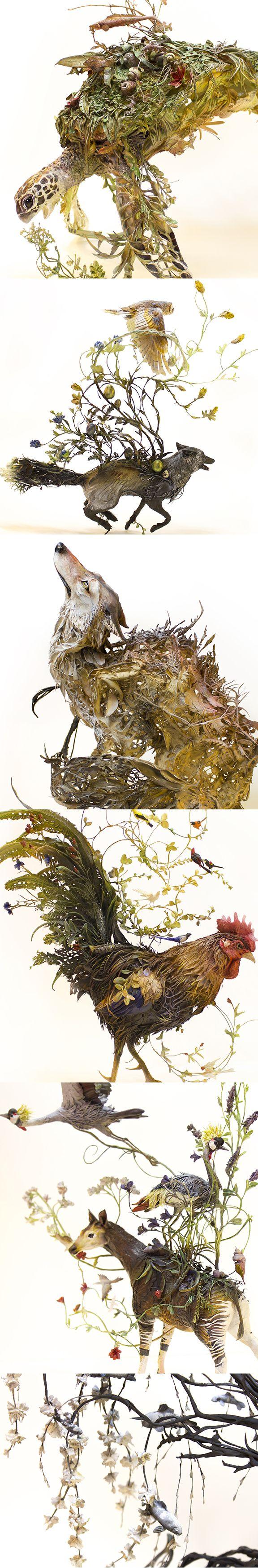 Ellen Jewett sculpture - new work 2015 - turtle fox coyote dog rooster chicken okapi crane koi fish