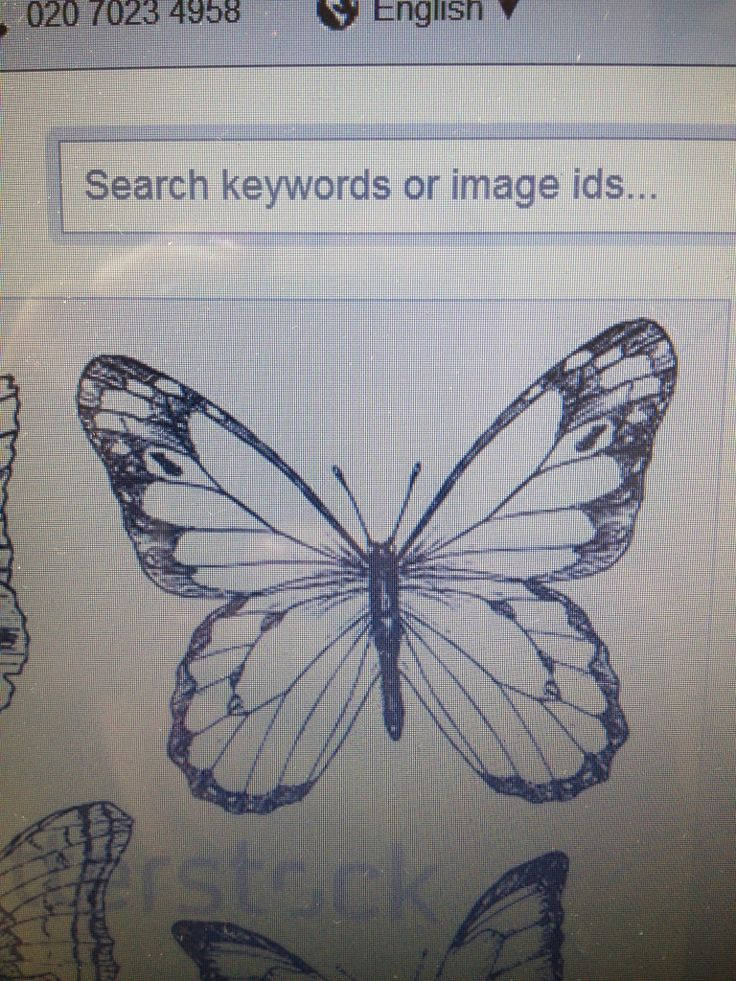 The day I found the butterfly for our logo... It just felt right to use this.